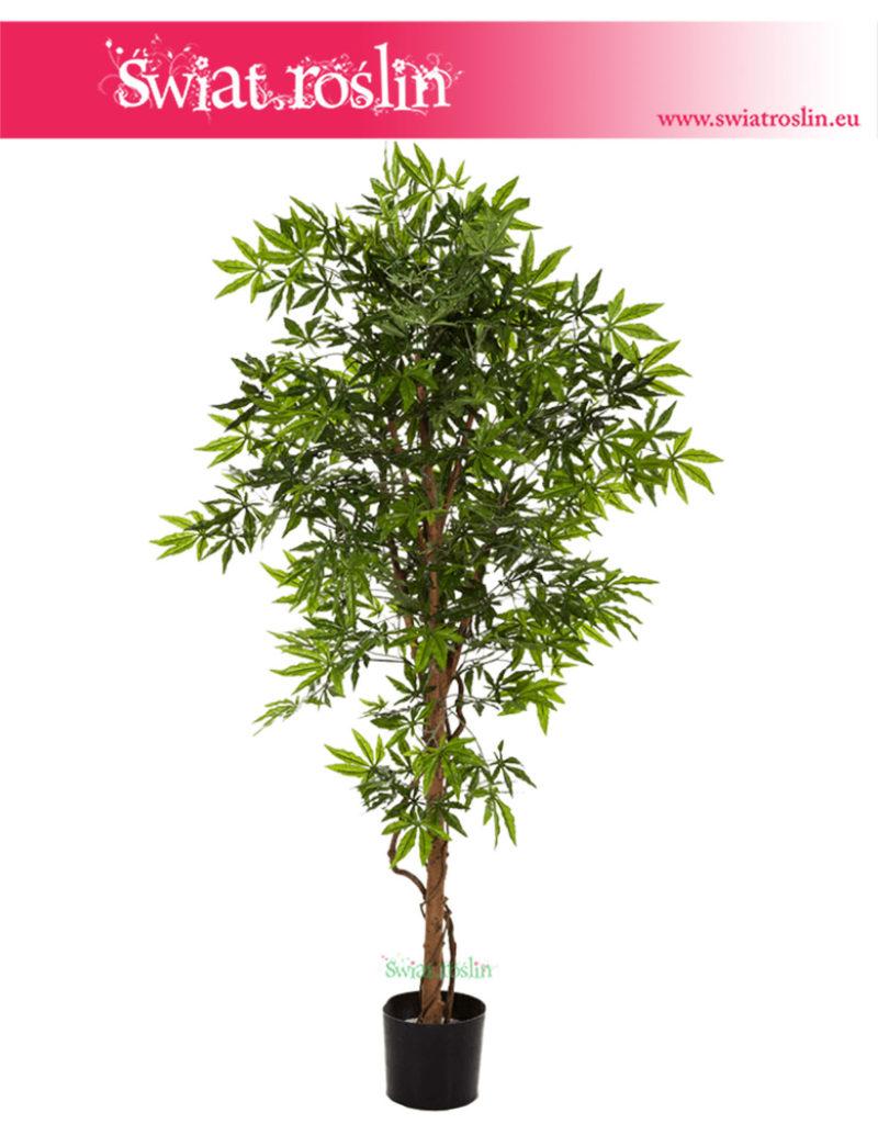 Klon Japoński, Sztuczny Klon Japoński, sztuczne drzewko, rosliny sztuczne kraków, wysyłka roślin sztucznych, sklep