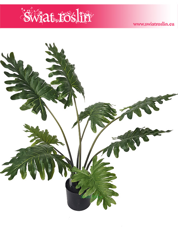 Philodendron – Sztuczny Filodendron 8 liści 1