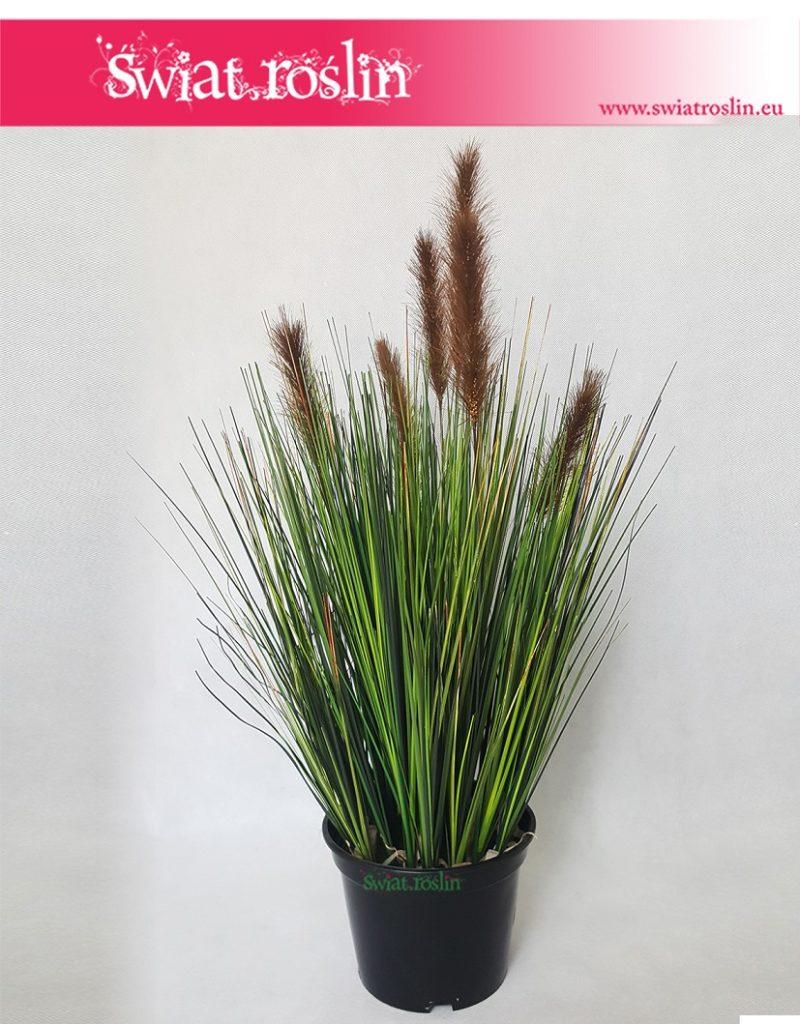 Trawa-doniczkowa-Trawa-sztuczna-Foxtail-–-Grass-Foxtail-Brown-Trawa-Foxtail-brązowa-3-800x1024
