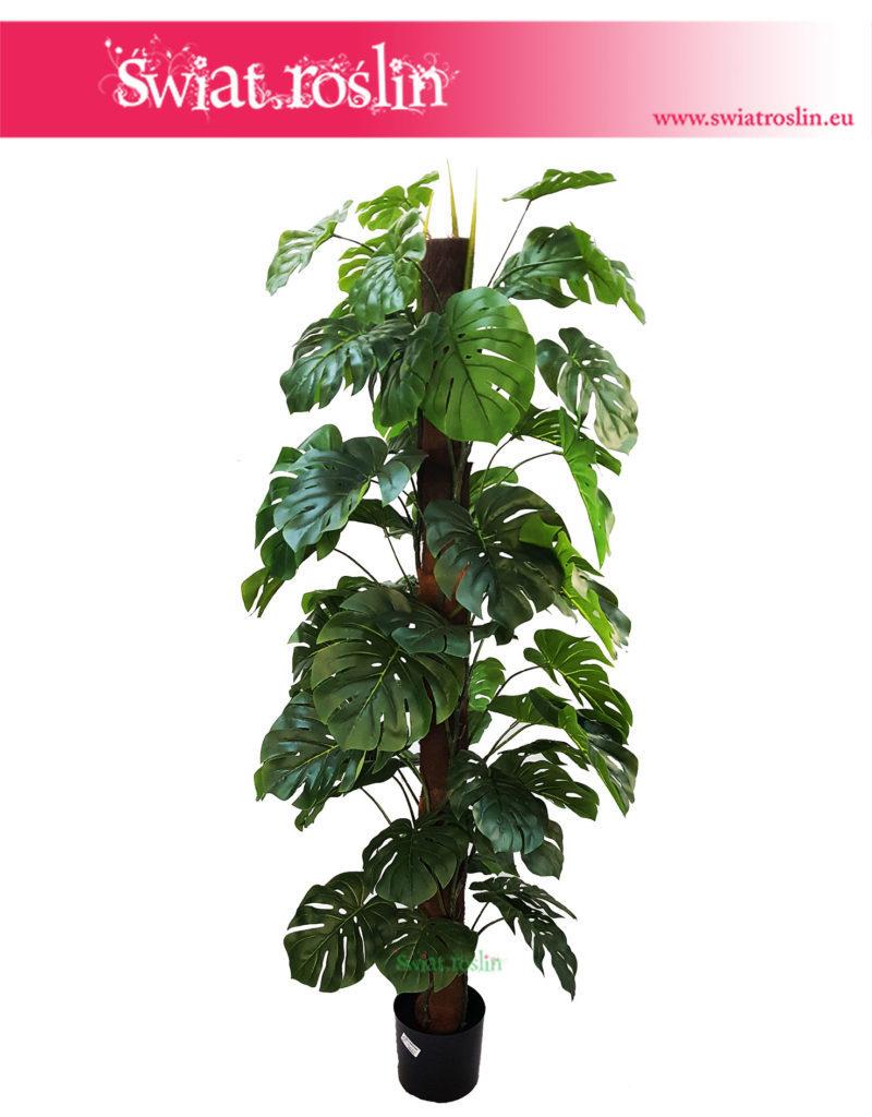 sztuczna-monstera, duże rośliny sztuczne